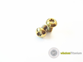 PVD Gold Color Titanium Disc Rotor Bolts Bicycle