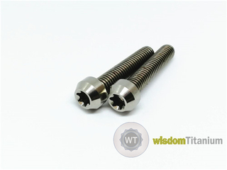 Titanium motorcycle bolts